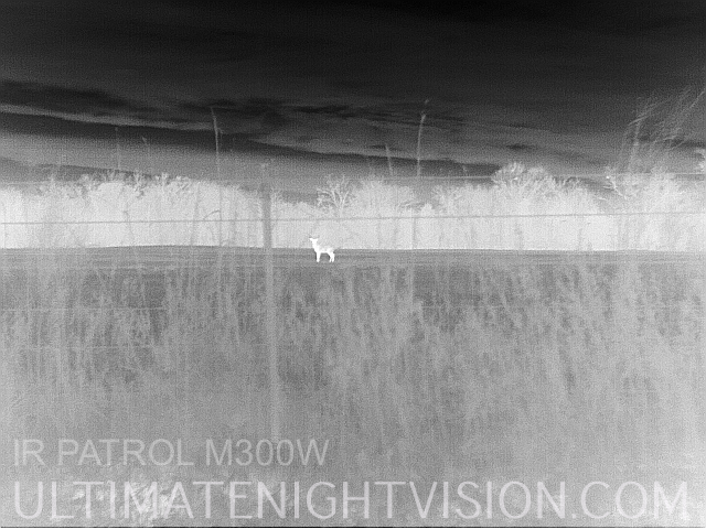 ir patrol m300w thermal images ultimate night vision